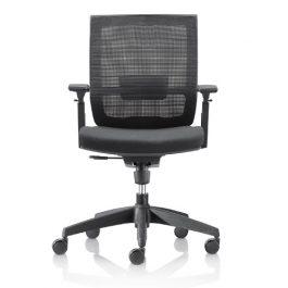 Optimus Ergonomic Chair